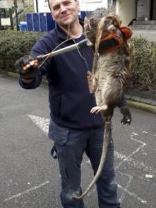 Criatura bizarra encontrada morta em Londres