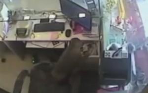 Câmeras de segurança flagram macaco roubando caixa de joalheria