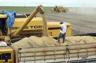 Caminhão é carregado com grãos de soja em fazenda no município de Primavera do Leste, no Mato Grosso