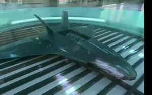 Cientistas cultivam quimicamente drones militares em laboratório